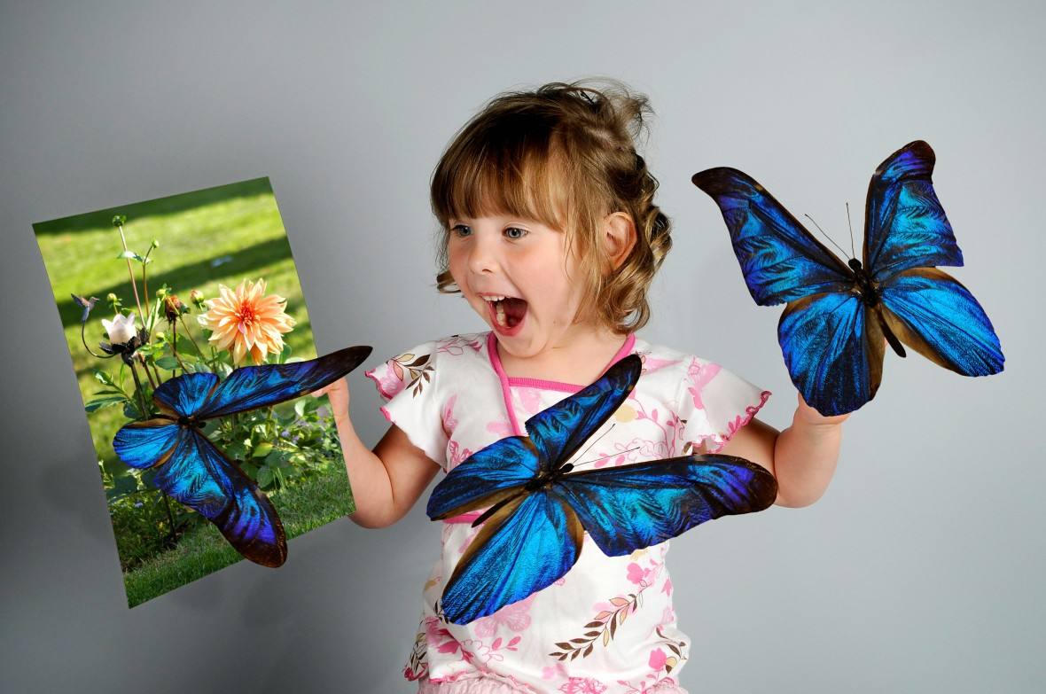 Butterfly Magic